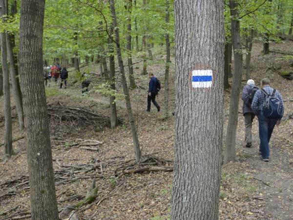 Hagyományteremtő túrák a Pilisi Parkerdőben. A Kéktúrázás napja október 10.