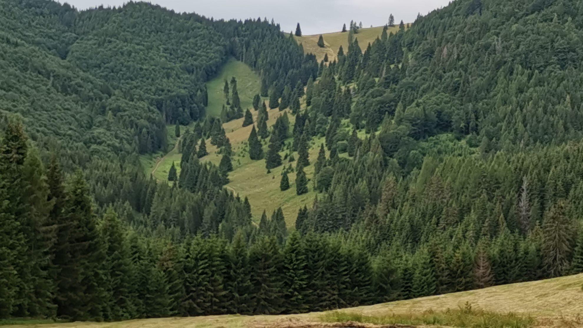 Solymos-völgy túra (Sokolia dolina)-10