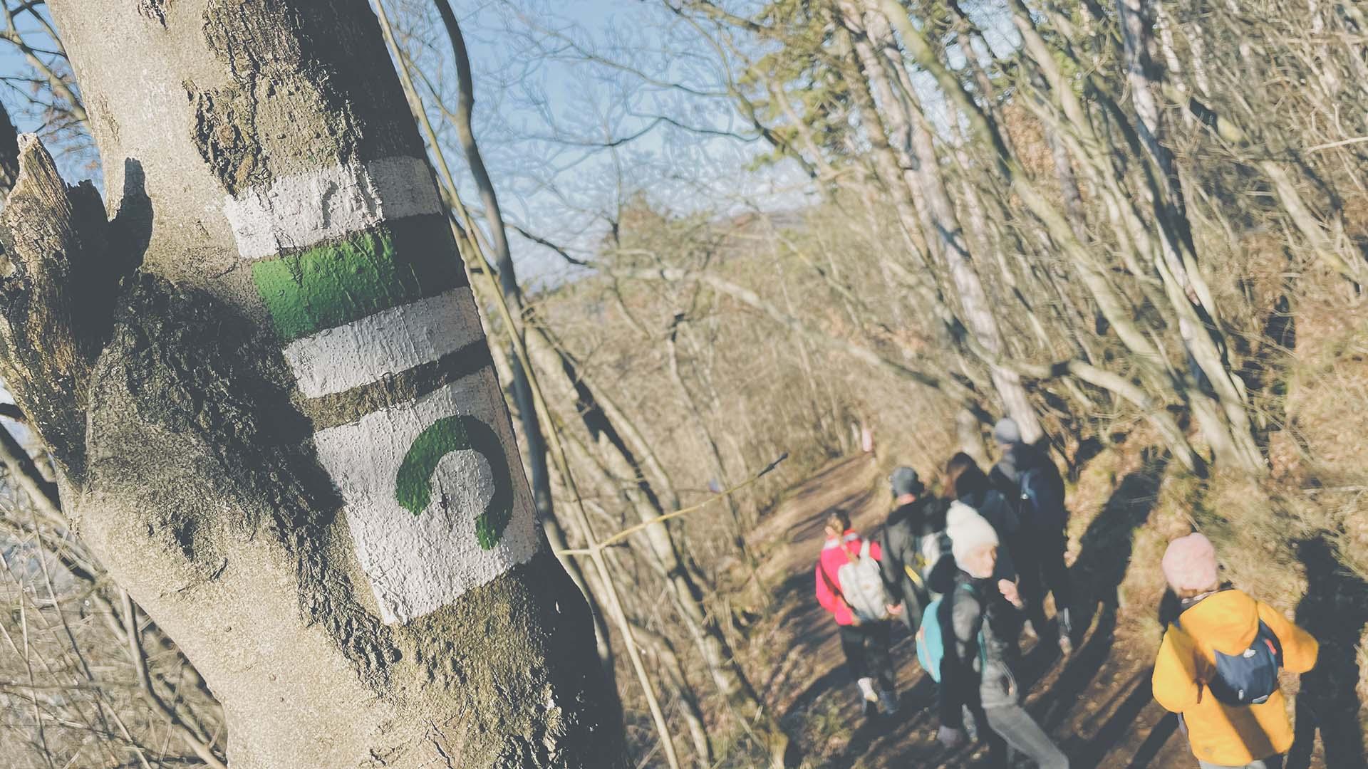 Sporteszközök használata az erdőben, avagy hogyan működjünk együtt a természetvédelemmel?-6