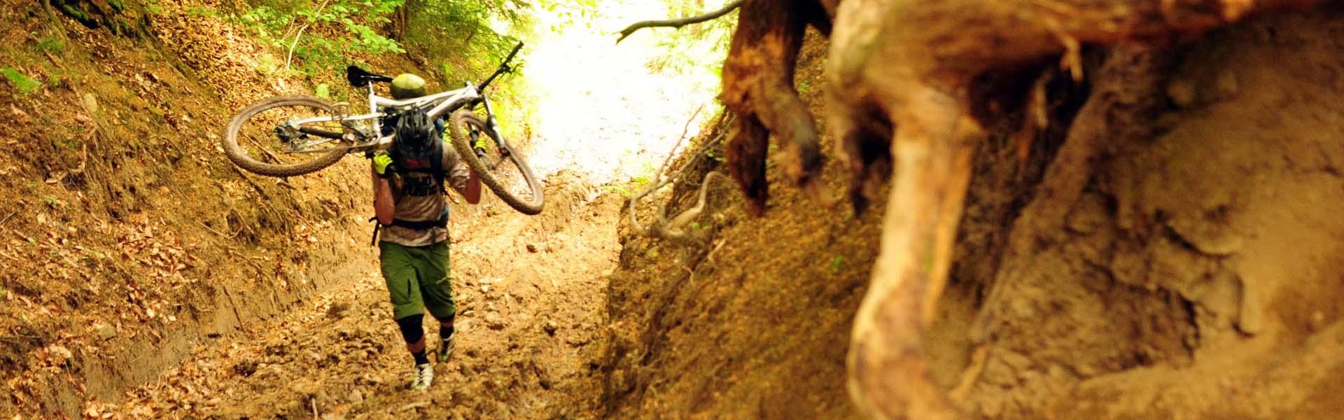 Sporteszközök használata az erdőben, avagy hogyan működjünk együtt a természetvédelemmel?