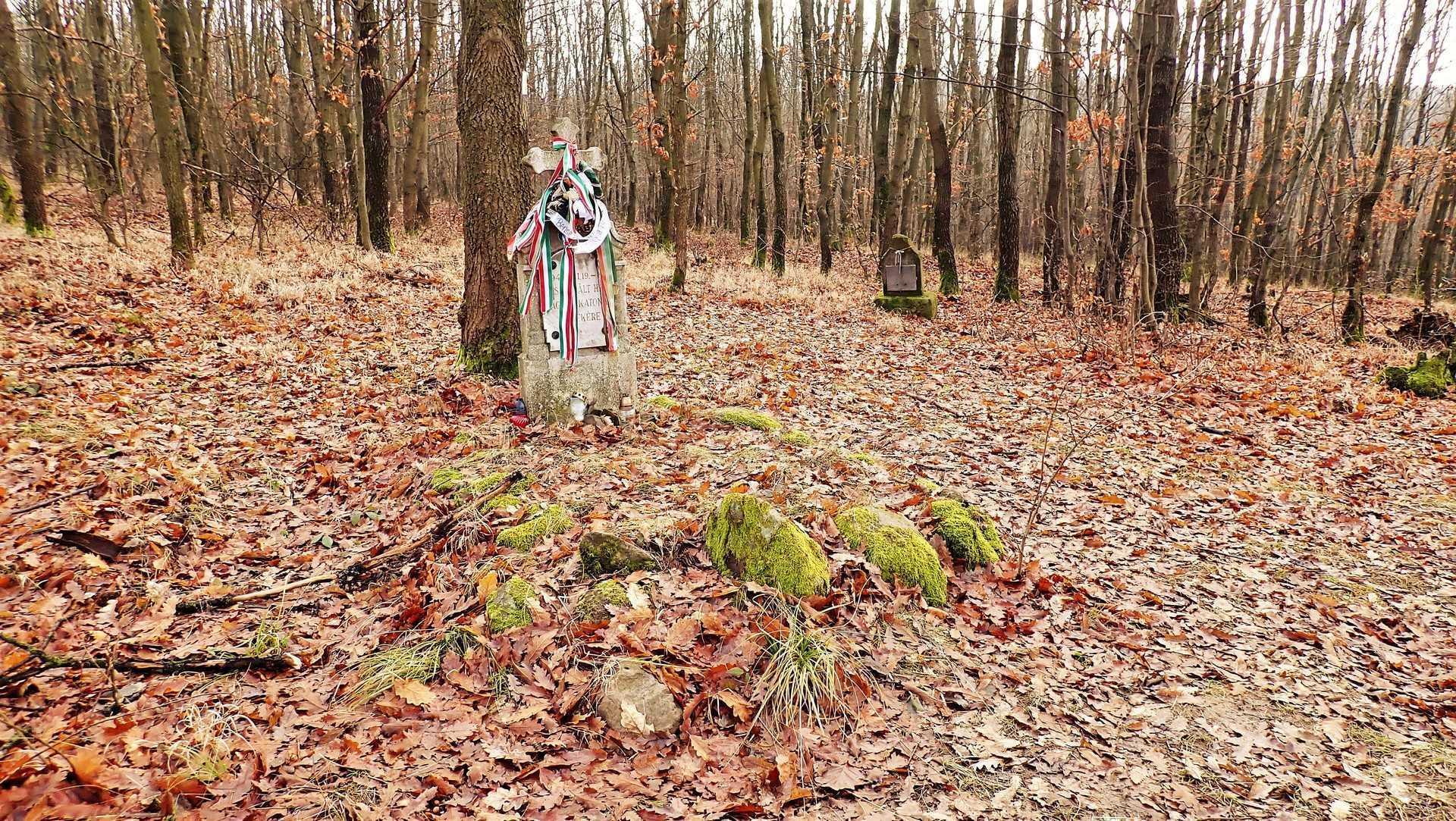 Nagy-völgy túra: A Cicőke és Kalakocs sztori-3
