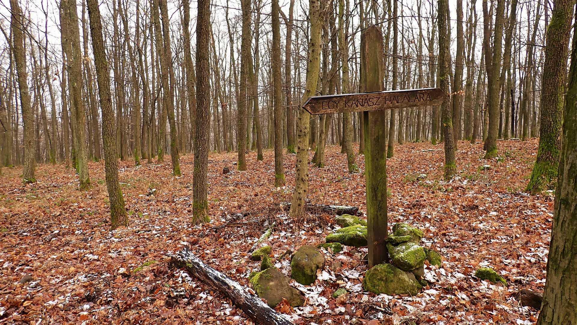Nagy-völgy túra: A Cicőke és Kalakocs sztori-4