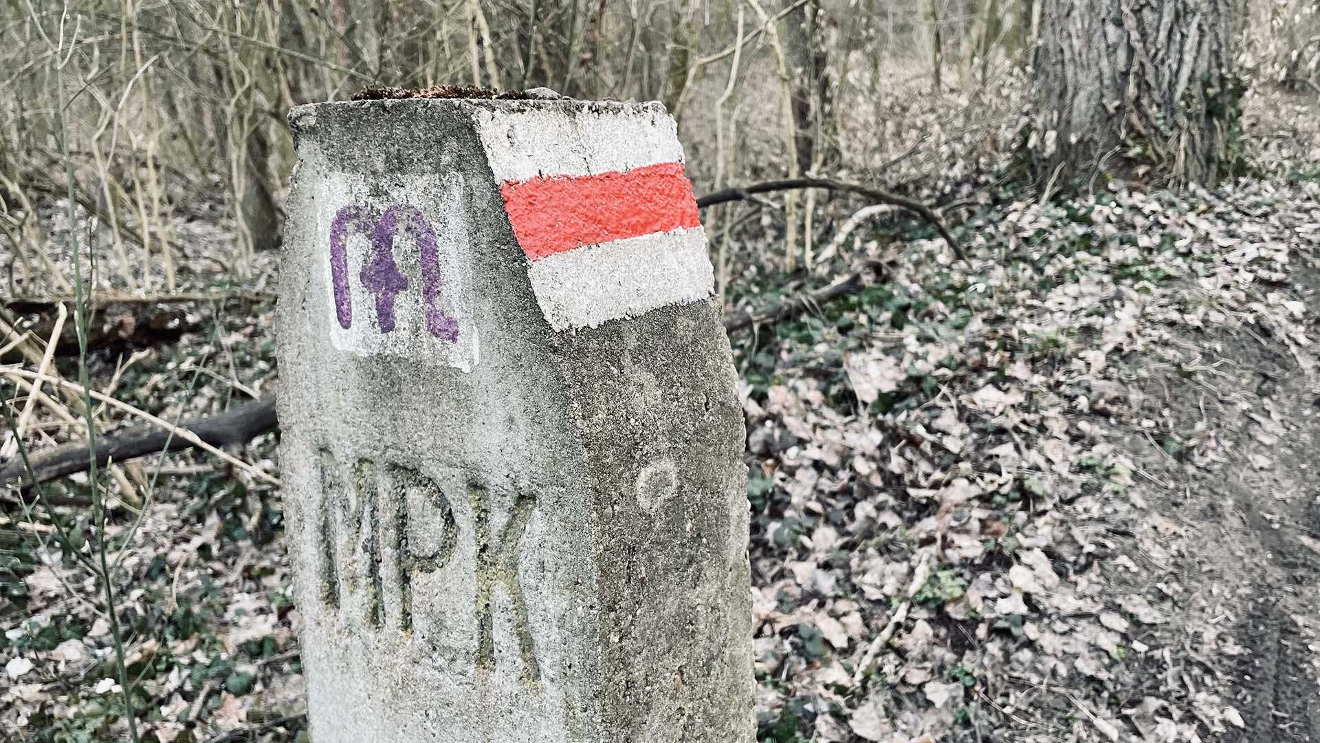 Babatpusztára a Gödöllői Dombvidéken-13