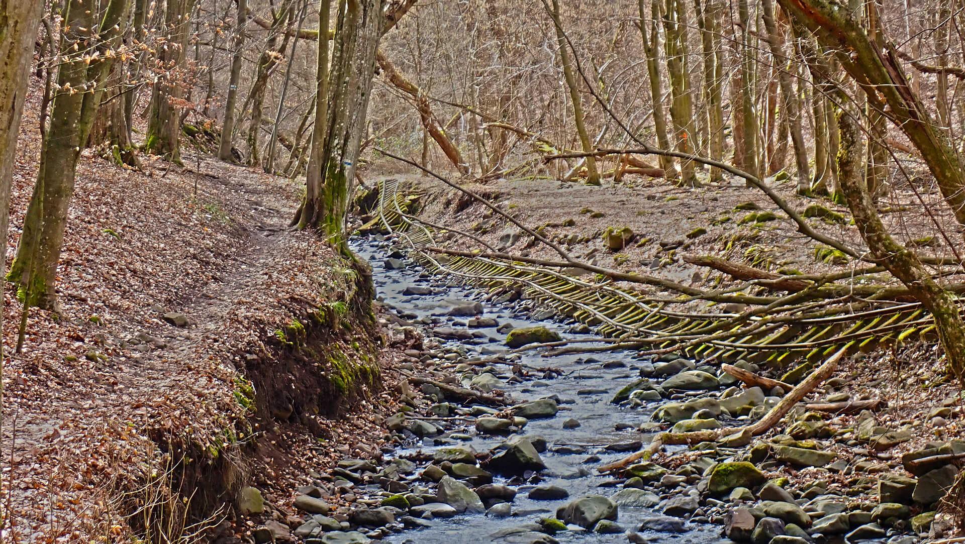A legendás Csarna-völgyből a Salgó-vári kilátásokig-3