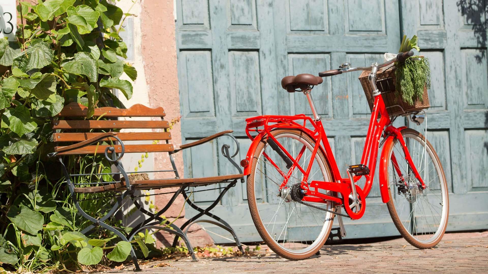 Szárnyakat adnak a bringánknak  a Pegasus márka elérhető Magyarországon is-1