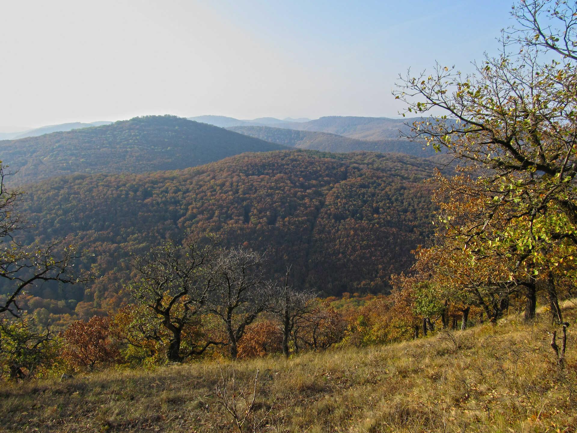 Túrázz a Magyar-hegyre, ha szereted a keményebb emelkedőket-2