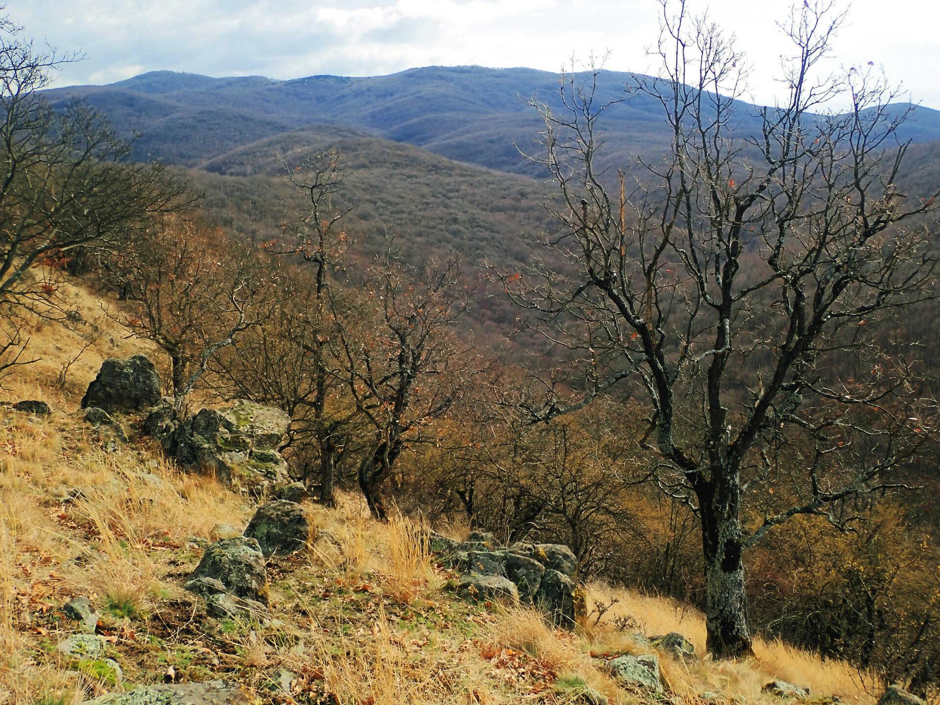 Túrázz a Magyar-hegyre, ha szereted a keményebb emelkedőket-5