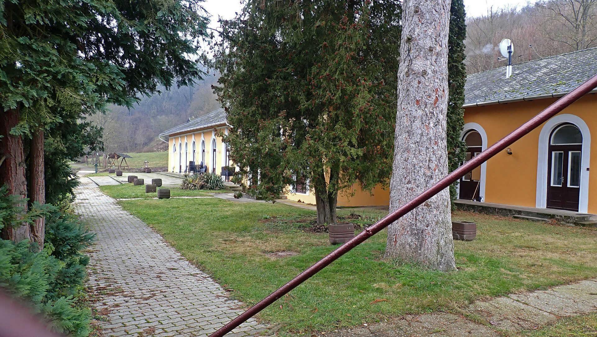 Börzsönyi kék túra második szakasz: Bernecebarátiból Nagybörzsönybe-3