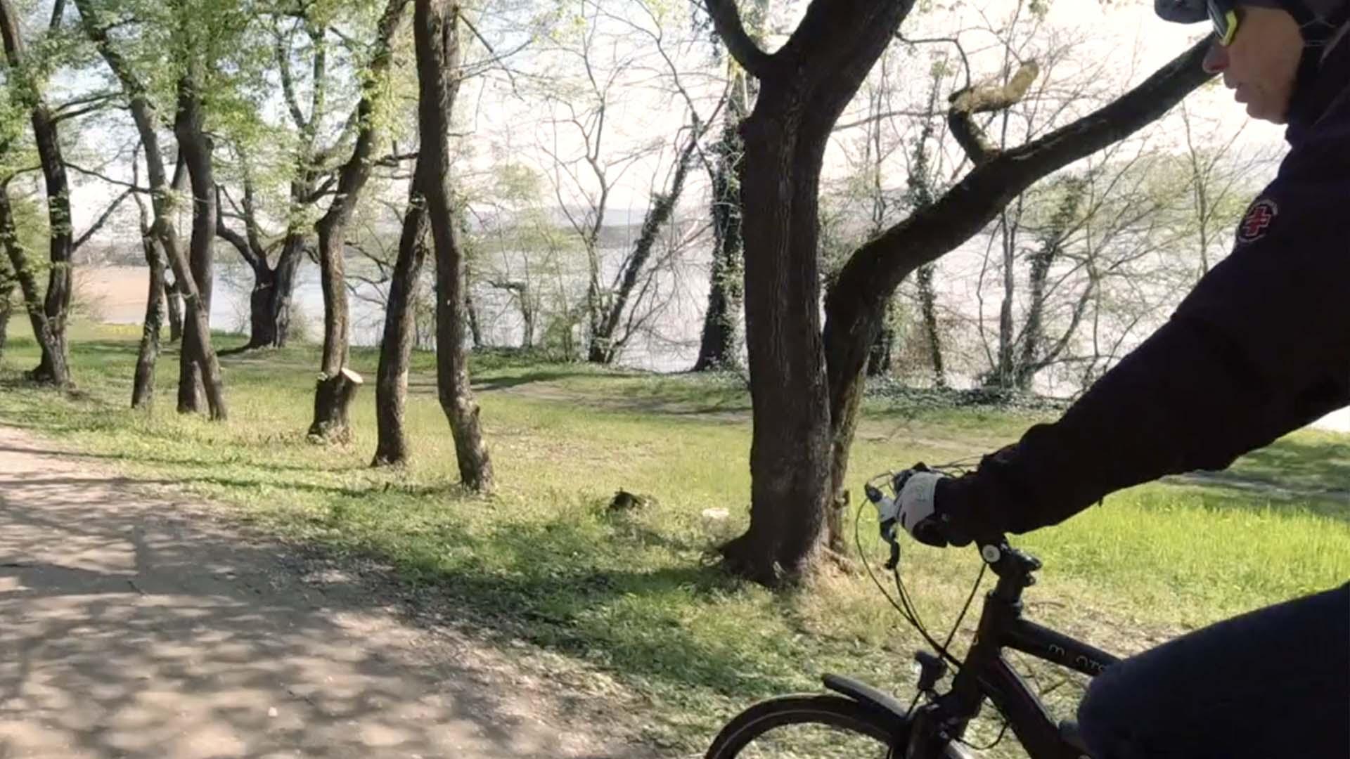 Tatai Öreg-tó körül kerékpárral-5