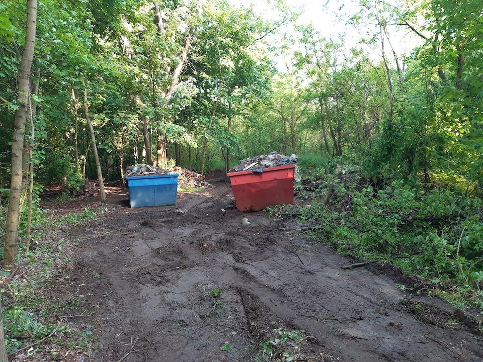 A hulladékmentes erdő közérdek-3