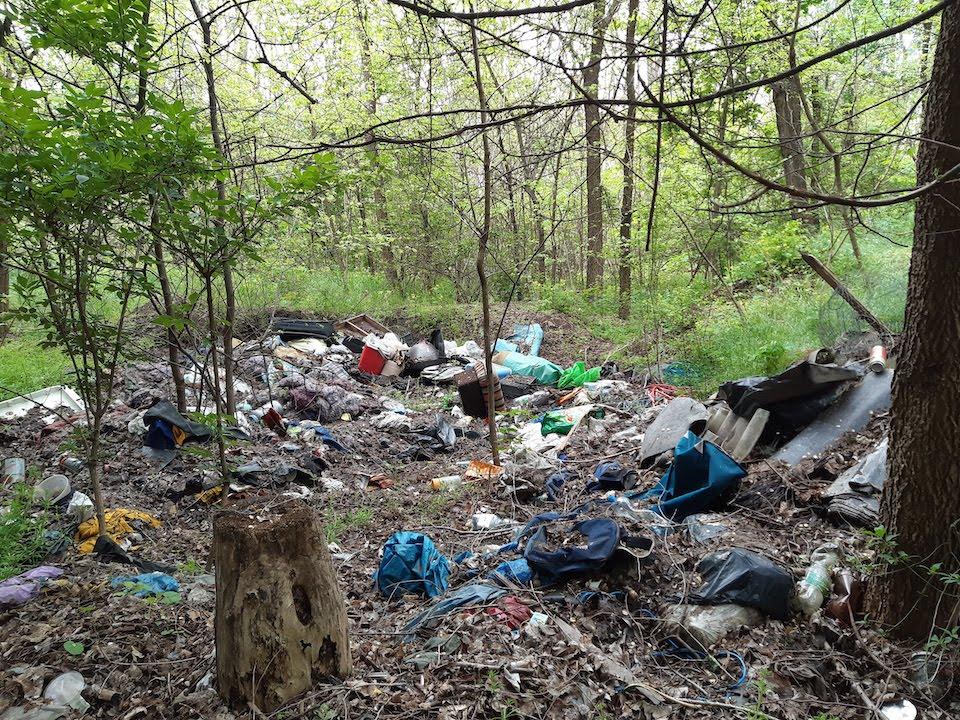 A hulladékmentes erdő közérdek-2