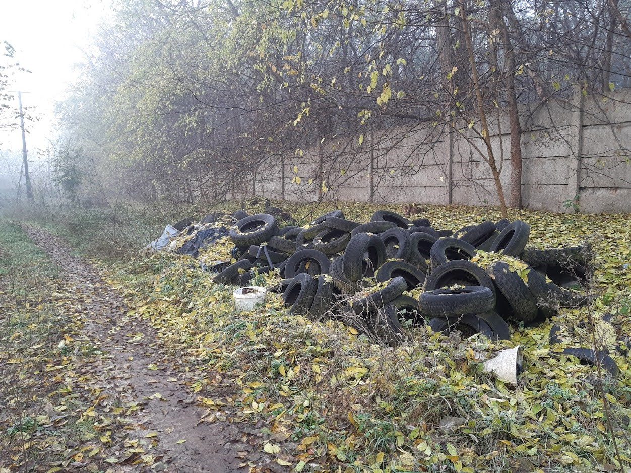 A hulladékmentes erdő közérdek-1