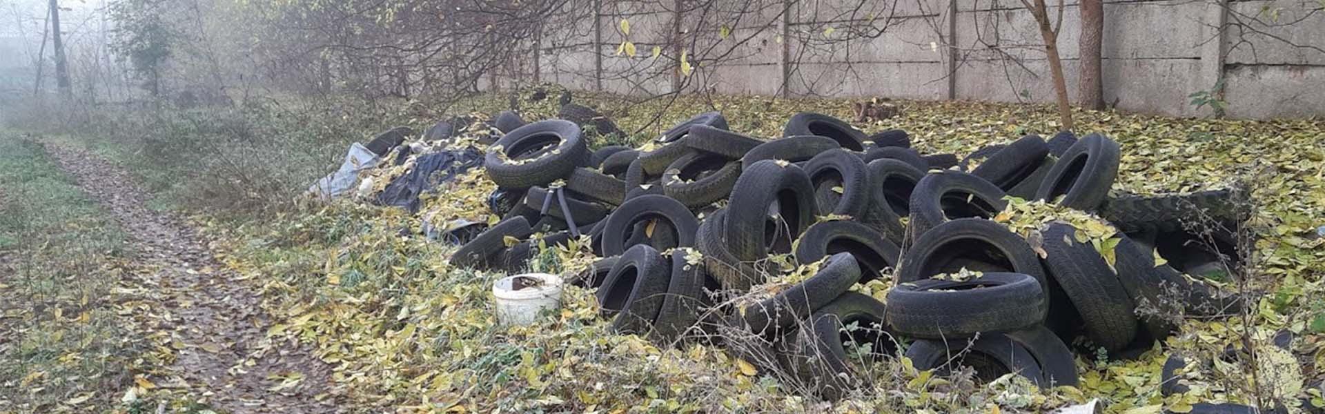 A hulladékmentes erdő közérdek