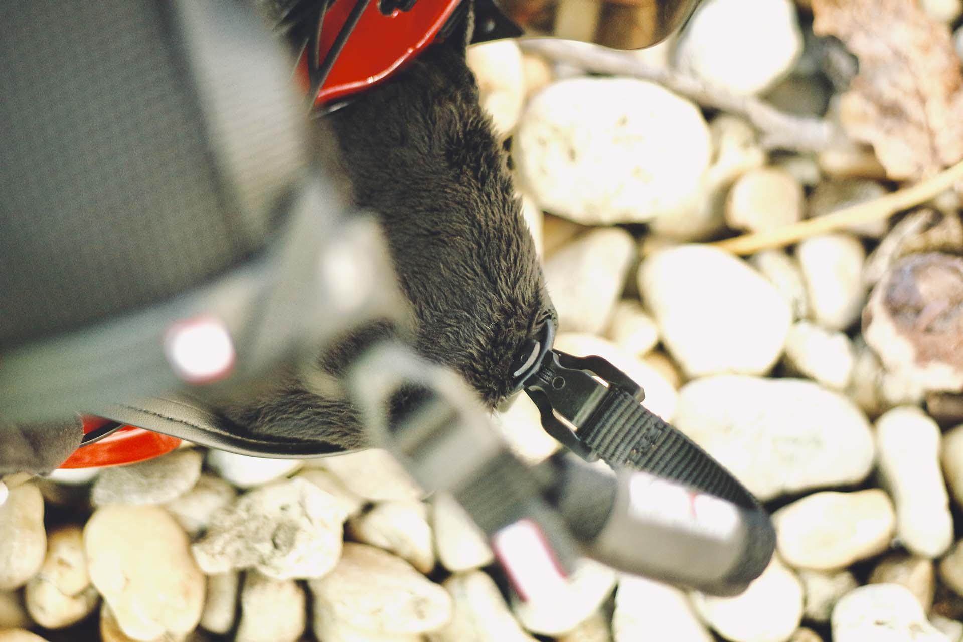 Fejvédő téliesítés - Casco négyévszakos megoldások-6